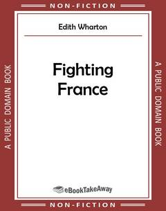 Fighting France